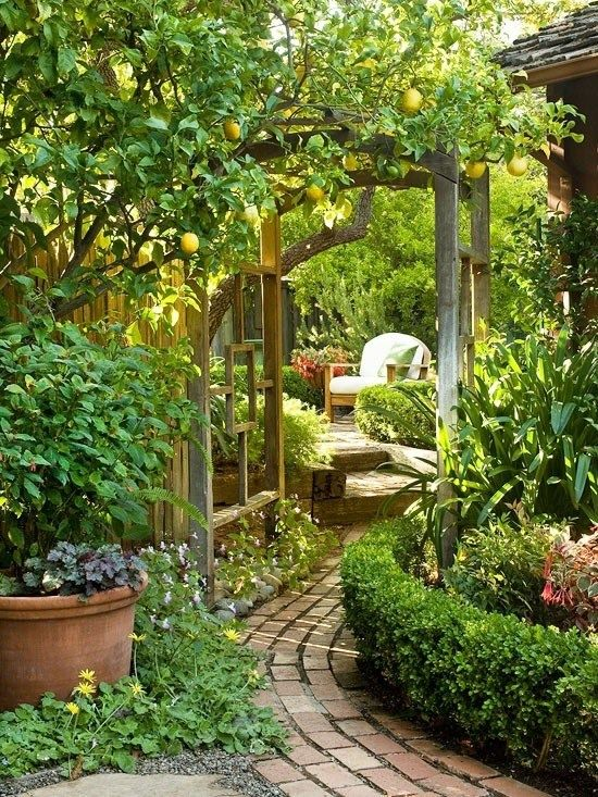 jardin con camino