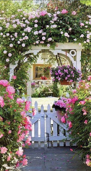 jardin con flores