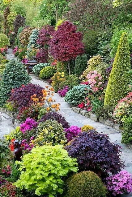 10 fotos de jardines con encanto for Arbustos para jardin