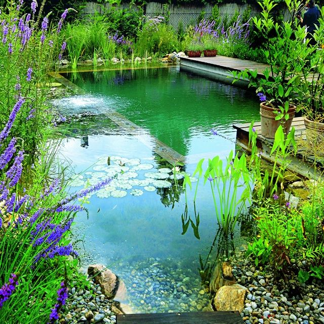 piscina natural en jardin
