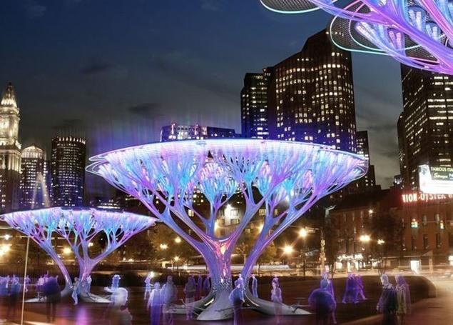 tree-pods
