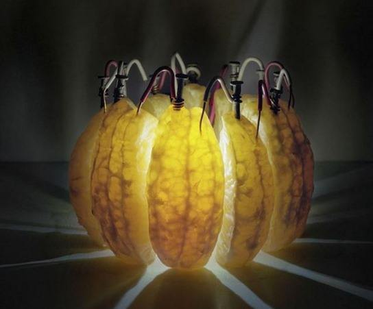 energia-acido-citrico_thumb.jpg