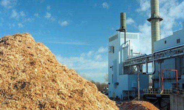 La-Biomasa-ayuda-a-reducir-las-emisiones-de-CO2_thumb.jpg