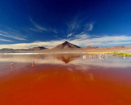 Laguna-Colorada-de-Uyuni