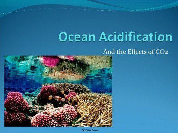 la-acidificacin-de-los-ocanos7_thumb.jpg