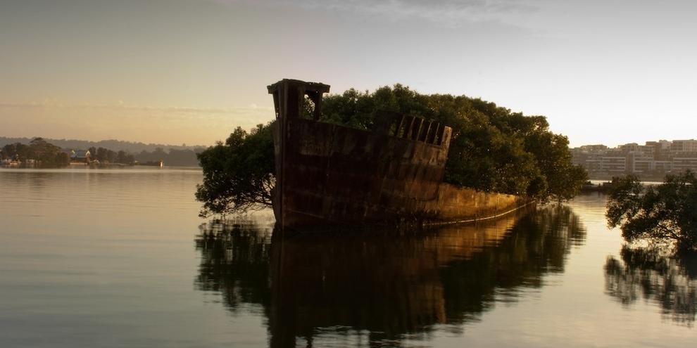 lugares hermosos abandonados restos del SS Ayrfield en Homebush Bay