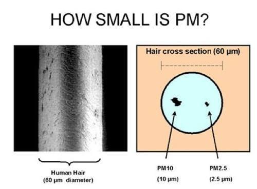 particulas-pm_thumb.jpg