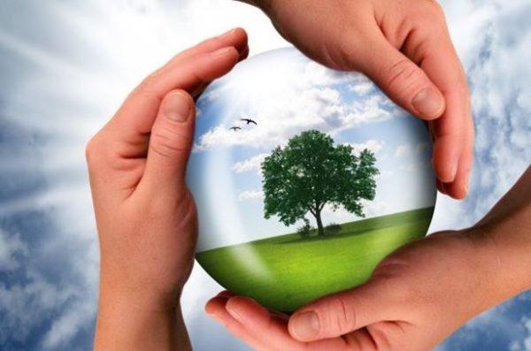 La-colaboracin-empresarial-importante-para-la-sustentabilidad_thumb.jpg