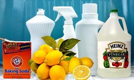 Día Mundial del Medio Ambiente-detergentes ecológicos