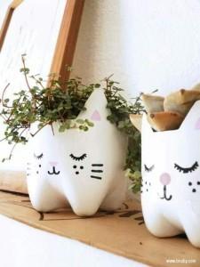 Macetas de gato con botellas recicladas
