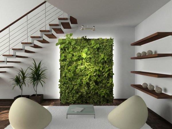 20 bonitas formas de decorar la casa con plantas de - Enredaderas de interior ...