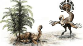 Neandertales, primeros en usar alisadores de cuero hace 50 mil años