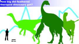 Dinosaurios emplumados gigantes, ¿qué tan grandes llegaban a ser?