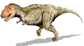 El Tiranosaurio, rey de los dinosaurios