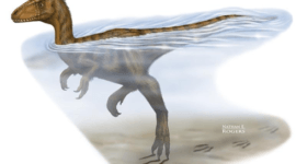 Dinosaurios nadadores