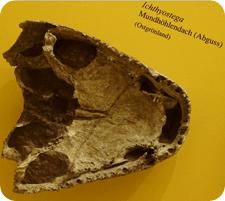 Los neandertales, autores del arte rupestre más antiguo