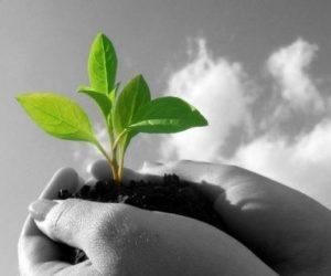 Políticas responsables para la sustentabilidad