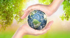 Día Mundial del Medio Ambiente | 5 de Junio 2015