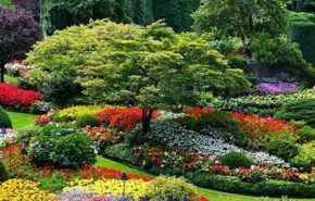 Fotos de jardines