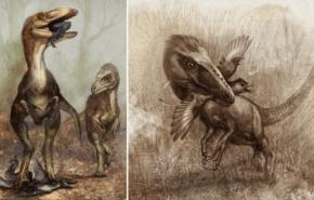 Dinosaurio emplumado que cazaba dinosaurios voladores