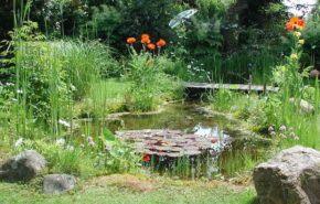 Jardinería ecológica, consejos