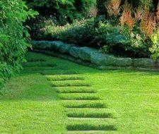 Rutas para el jardín