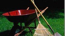 Desventajas de la jardineria vs jardineria ecologica