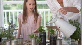 Consejos de jardineria para principiantes | Segunda parte