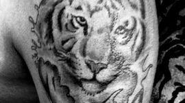 El gran tigre