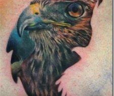 Tatuajes aves | halcones