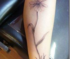 Tatuajes femeninos | Tatuajes de margaritas