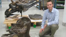 Alimento de dinosaurios, cómo se repartían la comida
