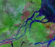 Proyectos ecológicos : Brasil recibe préstamos del Banco Mundial por 1,3 billones de dólares.