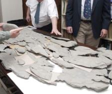 Extraña criatura marina desconcierta a paleontólogos
