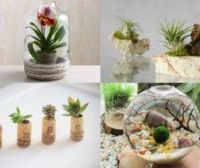 20 bonitas formas de decorar la casa con plantas de interior