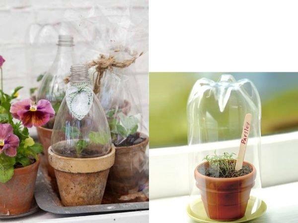 ideas-para-reciclar-botellas-de-plastico-invernadero-umadecoracion
