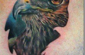 Tatuajes aves   halcones