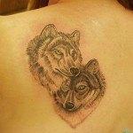 Tatuajes-coyote