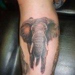 Tatuajes-de-elefantes7