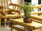 bamboo_furniture