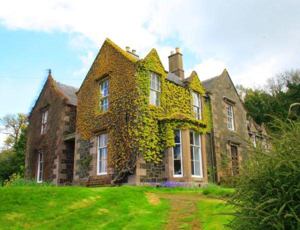 casa-bonita-con-fachada-llena-de-plantas