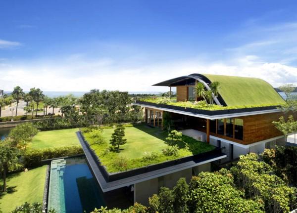 casas-ecologicas-y-modernas-casa-con-cesped