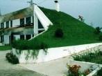 casas-ecologicas-y-modernas-con-jardin-en-el-techo