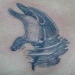 delfinquesurge