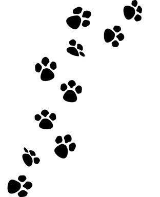 en recuerdo de la mascota el tatuaje tienen mucho de