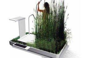 Ducha ecológica con plantas