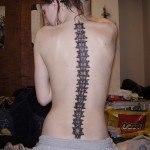 espina-dorsal11