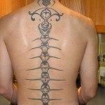espina-dorsal9