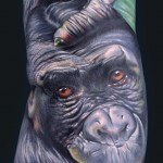 monkey_part_of_sleeve