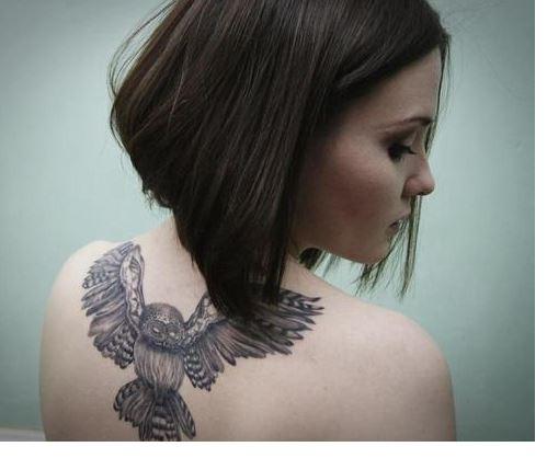 tatuaje de búhos